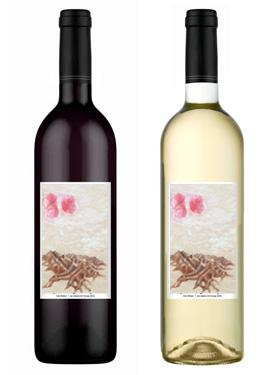 Viridiana Carmona Wine Bottles